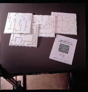 Ward's® Finger Maze Set