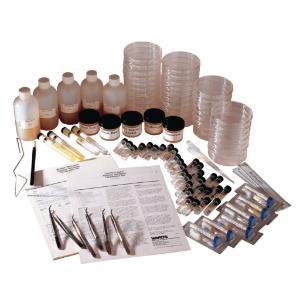 Ward's® Bacteria Sensitivity Combination Kit