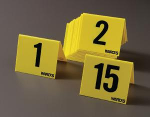 Ward's® Numbered Marker Tents