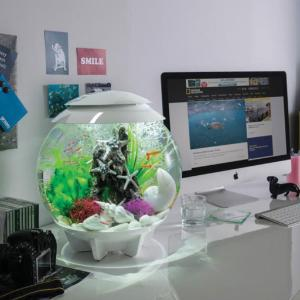 biOrb® HALO Aquaria