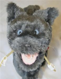 Rescue Critters® Critical Care Fluffy