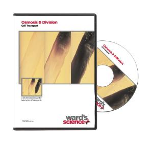 NewPath Osmosis/Diffusion Interactive Whiteboard Digital Download