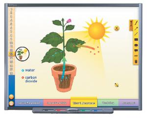 NewPath PHOTOSYNTHESIS Interactive Whiteboard Digital Download
