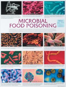 Biocam Pathogen Charts
