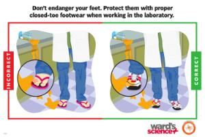 Ward's® Safety Poster Foot Protection