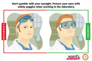 Ward's® Laboratory Safety Poster Safety Goggles