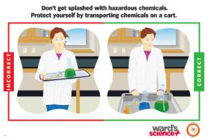 Ward's® Laboratory Safety Poster Transporting Chemicals