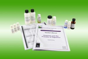 Enzymes and the Process of Digestion - Small Group Learning Kit