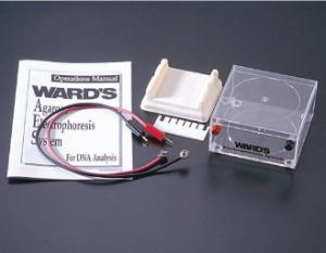 Ward's® Introductory Electrophoresis Hardware Systems