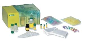 Bio-Rad® ELISA Immuno Explorer™ Kit