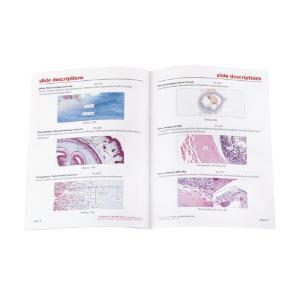 General Connective Tissues Slide Set
