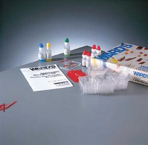 Ward's® Immune Response: Antigen/Antibody Reactions Kit