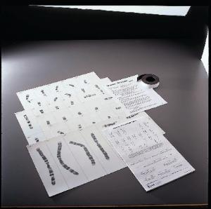 Magnetic Karyotyping Kit