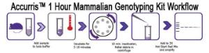 Accuris™ Mammalian Genotyping Kit