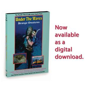 Under the Waves: Strange Creatures