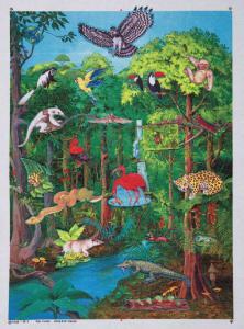 Rainforest Felt Pieces