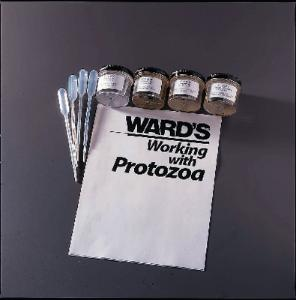 Ward's® Live Ameoboid Set