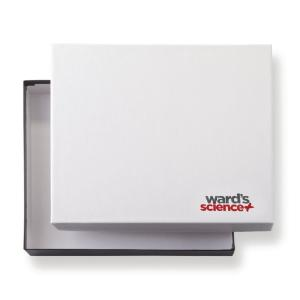 Ward's® Collection Boxes