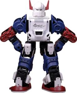 XYZ Robot Bolide Robot