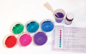 Red Cabbage pH Indicator Kit