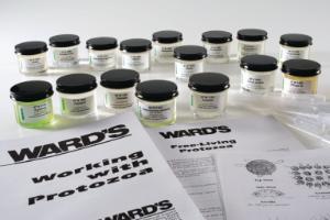 Ward's® Live College Protist Set
