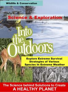 Video species in extreme weather