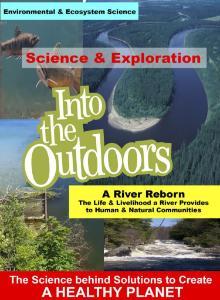 Video river provides communities