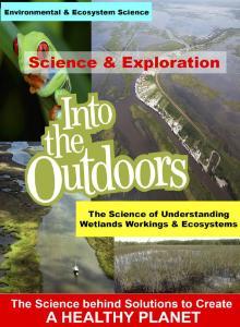 Video understanding wetlands