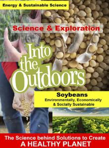 Video soybeans