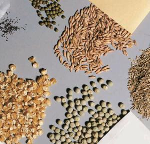 Seed Set Seven Types