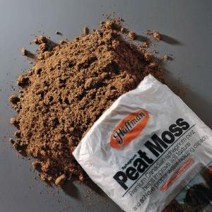 Peat Moss