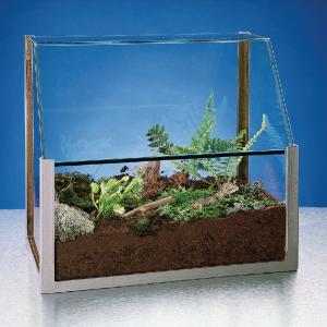 Heavy-Duty Terrarium