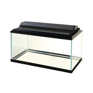 29-Gallon Glass Aquarium