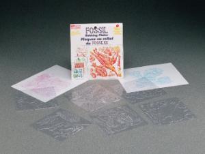 Fossils Rubbing Plates