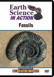 Earth Science in Action: Fossils DVD