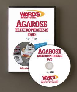 WARD'S Agarose Electrophoresis Training VHS/DVD