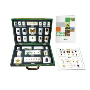 Invertebrates 27 Piece Embedment Set