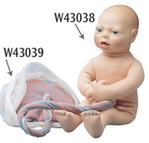 Cloth Childbirth Models