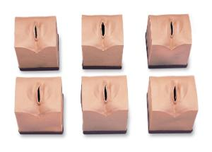 Cervical Dilatation Simulators