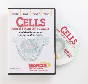 Interactive Whiteboard Science Lessons: Cells