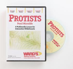 Interactive Whiteboard Science Lesson CD: Protists
