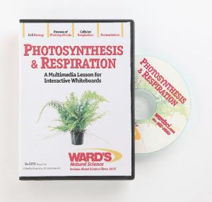 Interactive Whiteboard Science Lesson CD: Photosynthesis & Respiration
