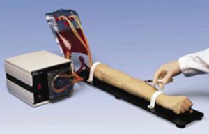 Arterial Training Arm