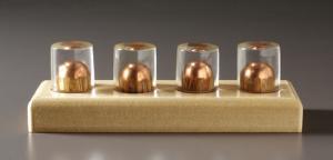 Ward's® Embedded Ballistics Sets