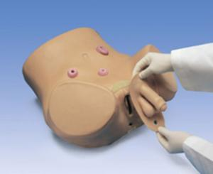 Gaumard® Male And Female Catheterization And Ostomy Care Simulator
