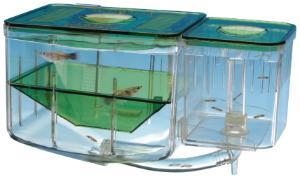 Aqua-Nursery