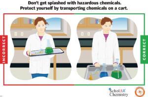 Ward's® Laboratory Safety Poster Set