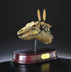 Dinosaur Skull Model