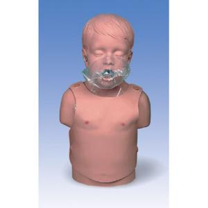 Child CPR Training Torso
