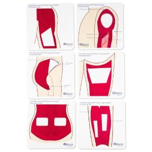 Anatomical templates color, large